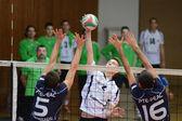 Kaposvar - PTE-PEAC volleyball game — Stock Photo