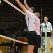 Kaposvar - PTE-PEAC volleyball game — Foto Stock