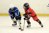 Kaposvar - Szombathely U8 Ice hockey match — Stock Photo