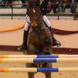 Masters Tournament International Jumping Competition — 图库照片