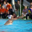 Kaposvar - Honved water-polo game — Stock Photo #31873843