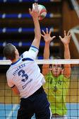 Kaposvar - Sumeg volleyball game — Stock Photo