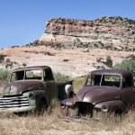 Abandoned cars — Stock Photo #13896825