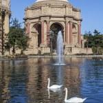 Palace of Fine Arts, San Francisco — Stock Photo