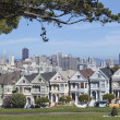 Постер, плакат: Painted Ladies in San Francisco
