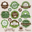 Collection of eco and bio labels, badges and icons — Imagen vectorial