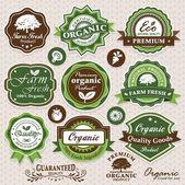 Collectie eco en bio etiketten, insignes en pictogrammen — Stockvector