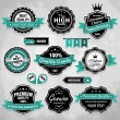 Collection of vintage retro labels, badges and icons — Stock Vector #13242439