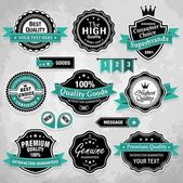 Collection of vintage retro labels, badges and icons — Stock Vector