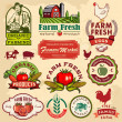 Stock Vector: Collection of vintage retro farm labels and design elements
