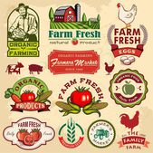 Collection of vintage retro farm labels and design elements — Stock Vector