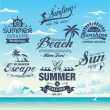 Collection of vintage retro grunge summer labels, labels, badges and icons — Stock Vector #46007431