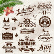 Vintage summer design with labels, icons elements collection — Stock Vector #46007669