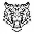 Stock Vector: Tiger face