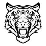 Tiger face — Stock Vector