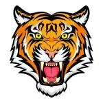 Постер, плакат: Tiger head