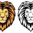 Lion Head — Stock Vector #24710409