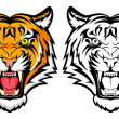Royalty-Free Stock Vector Image: Tiger anger