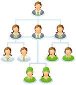Organization chart — Stock Vector