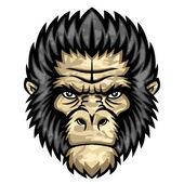 Monkey head — Stock Vector