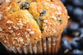 Blueberry Muffin with Blueberries in Background — Stock Photo
