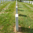 Arlington National Cemetary - Stock Photo