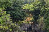 Bridge in Maui Hawaii on the Road to Hana — Stock Photo