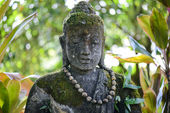 Stone Buddha in Jungle — Stock Photo