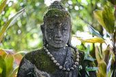 Stone Buddha in Jungle — Stock Photo