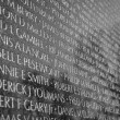Vietnam War Memorial — Stock Photo #19109041