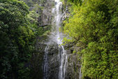 Waterfall in Maui Hawaii along the road to Hana — Stock Photo