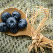Blueberries on a Spoon — Stock Photo