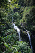 Waterfall in Maui Hawaii on the Road to Hana — Stock Photo
