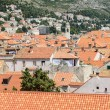 Homes in Dubrovnik Croatia — Stock Photo #28772447