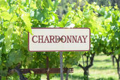 Chardonnay Grapes Sign — 图库照片