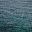 Stock Photo: Dark Waters OceBackground