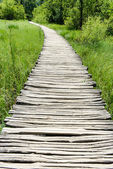 Wooden Hiking Trail — Stock Photo