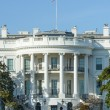 Stock Photo: White House in Washington DC