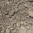 Dirt Mud Background — Stock Photo