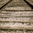 Railroad Tracks — Stock Photo #36491891