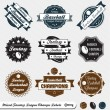 Vector Set: Mixed Fantasy Sports League Champs — Stock Vector #12252875