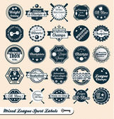 Vector set: etichette e loghi lega sportivi misti — Vettoriale Stock