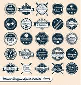 Ensemble de vecteurs: étiquettes et logos ligue de sport mixte — Vecteur
