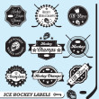 Vector Set: Ice Hockey League Labels and Badges — Stock Vector