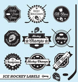 Vector Set: Ice Hockey League Labels and Badges — Stok Vektör