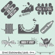 Stock Vector: Vector Set: Skateboarding Labels and Badges