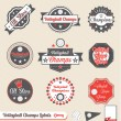 Vector Set: Retro Style Volleyball League Labels — Stock Vector #13540756