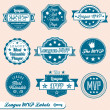 Stock Vector: Vector Set: Retro Style League MVP Labels and Icons