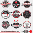 Vector Set: Vintage Dart Champion Labels and Stickers — Stock Vector