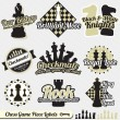 Stock Vector: Vector Set: Vintage Chess Piece Labels and Icons